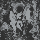 &lt;span&gt;Converge / Dropdead Split&lt;/span&gt;