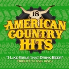 I Like Girls That Drink Beer &#40;Tribute to Toby Keith&#41;