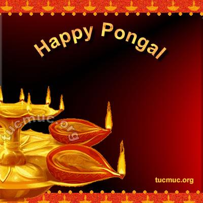 Happy-Pongal Cards